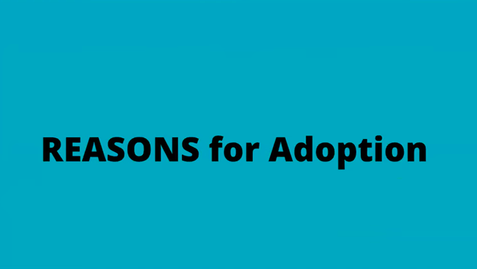 Reasons for Adoption