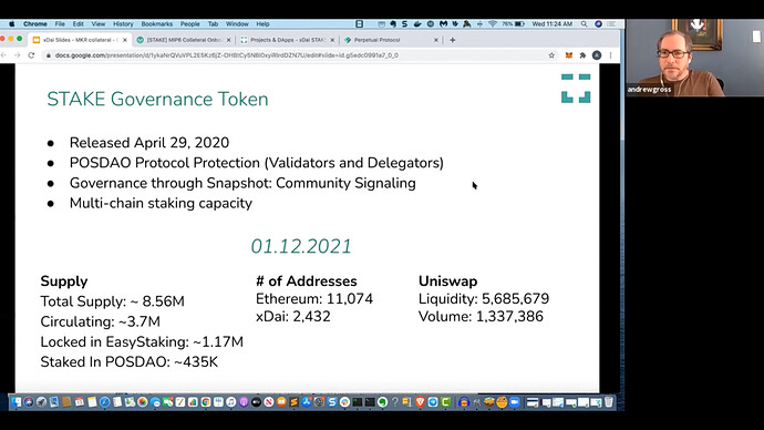 STAKE governance token