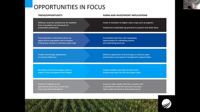 Opportunities in focus